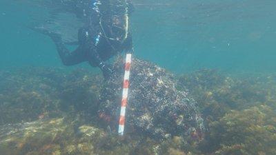 Проучванията са естествено продължение на сухоземните проучвания на острова от месец юни