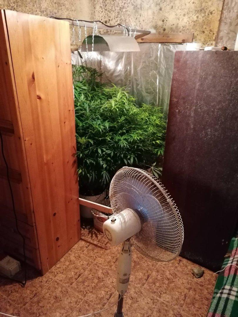 Саксиите са открити в стаи в къщата в Китен. Снимка ОД на МВР