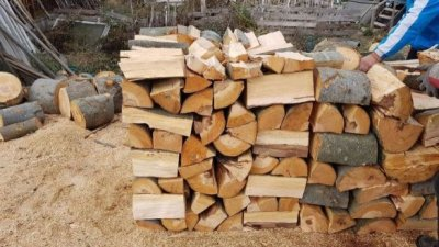 Значителна част от домакинствата в страната се отопляват през зимата на дърва