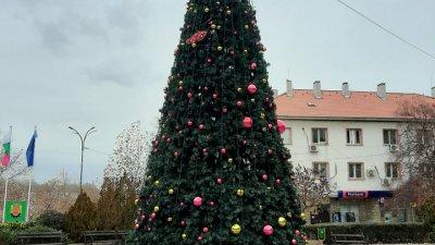 Коледната елха вече грее празнично и радва жителите на Средец.