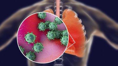 10 души с диагностициран корона вирус са починали през последното денонощие. Снимката е илюстративна