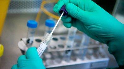 Потвърдените случаи чрезPCR теста са 22 броя, а чрез бърз антигенен тест - 61. Снимката е илюстративна