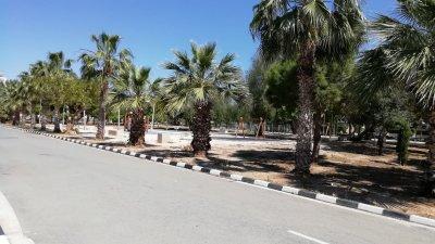 Паркът, в който иначе се събират много българи, в момента е празен и пуст. Снимки Даниела Желева