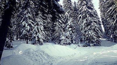 Най-голяма е снежната покривка в планините