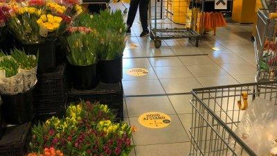 В магазините може да липсват хартия и яйца, но лалета има. Снимки Даниела Куманова