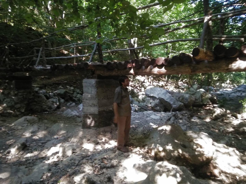 Съоръженията минават през една от живописните местности в Странджа. Снимка ДПП Странджа