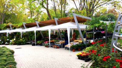 Изложението ще се проведе от четвъртък до неделя във Фората. Снимка Община Бургас