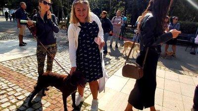 Кучетата бяха осиновени по време на кампания. Снимки Община Бургас