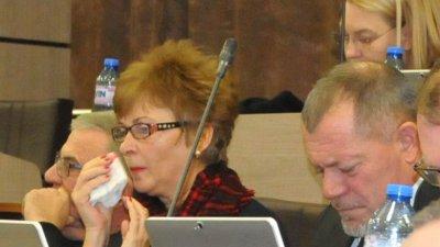 Пеньо Мечков е новият председател на Комисията по туризъм. Снимка Лина Главинова