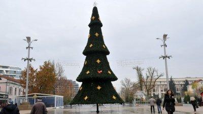 Така изглежда елхата на Тройката тази година. Снимка Лина Главинова и архив Черноморие-Бг