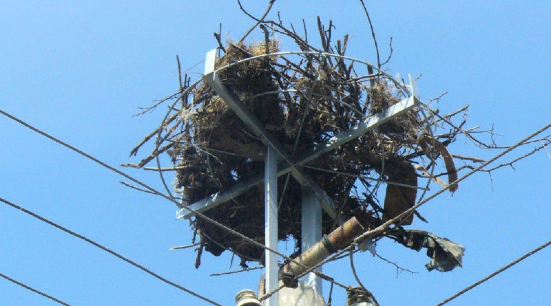 Броят на металните гнезда ще бъде десет. Снимка Архив