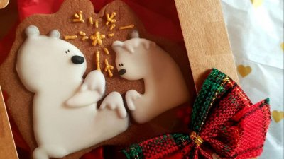 Белите мечки са темата тази година. Снимки Личен архив