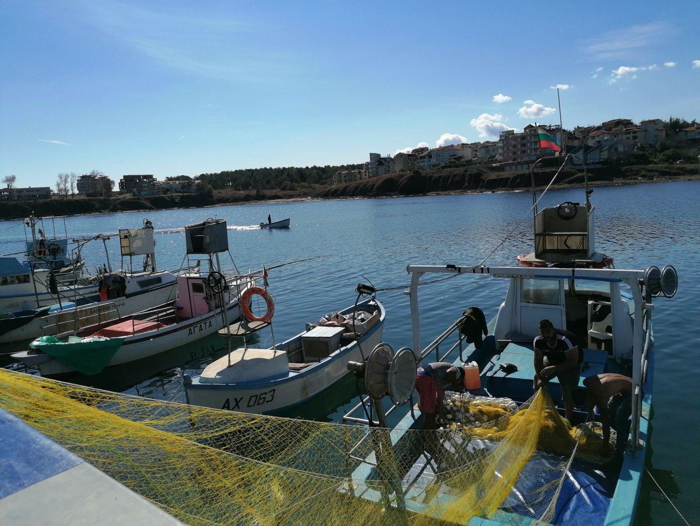 Рибарите в Ахтопол се радват на топло есенно време и добър улов на паламуд. Цената на рибата варира между 4 и 8 лева в зависимост от големината й. В Созопол мнозина изполваха топлия почивен ден, за да се разходят край морето, да се порадват на слънчевите лъчи и да се изкъпят в морето. Снимки Черноморие - бг