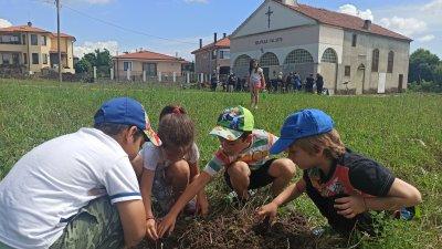 Децата засадиха дръвчета в двора на църквата