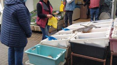 Сафридът е най-продаваната риба на пазара в Бургас