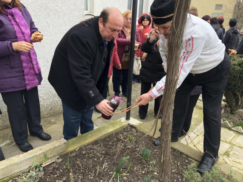 Кметът на Средец Иван Жабов се включи в ритуала по зарязване на лозята
