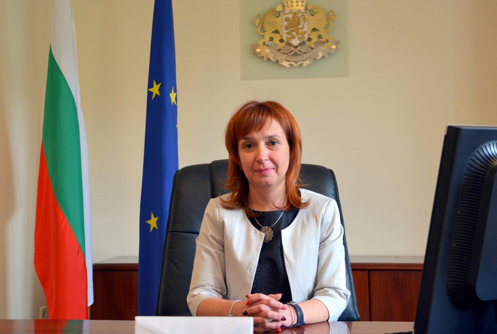 В момента в регистъра на приемните семейства са вписани 2360 семейства, каза зам.-министър Русинова. Снимка МТСП