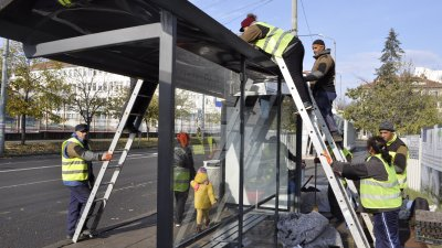 Работници поставят зеленината върху покривите на спирките. Снимки Община Бургас