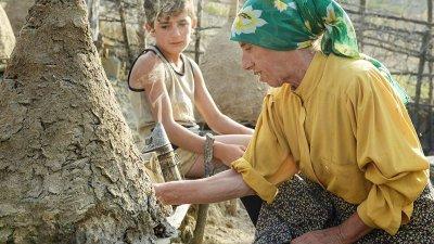 Медена земя бе отличен на кино фестивала Сънданс