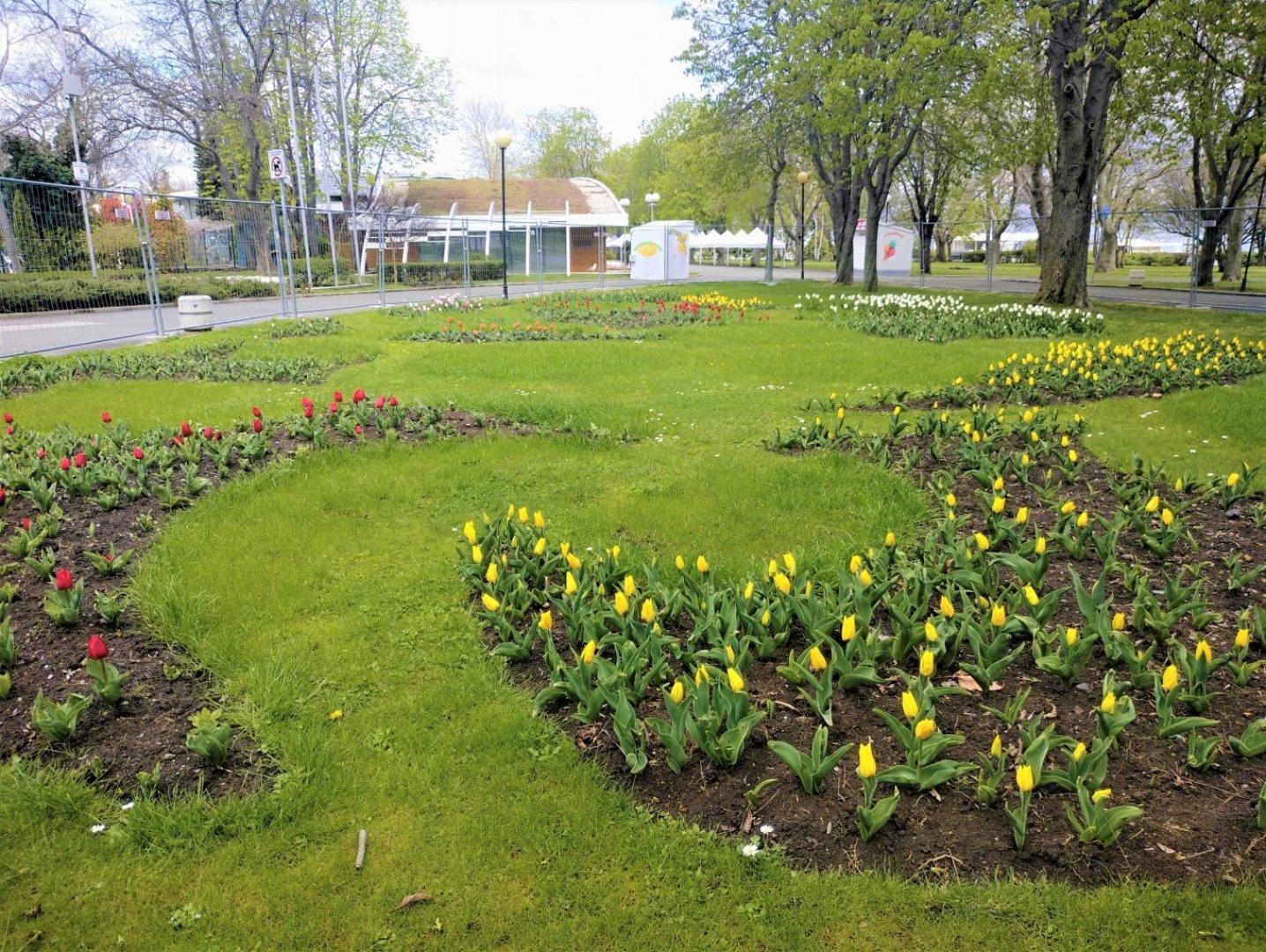 Изложението ще се проведе от 8 до 16 май в Морската градина. Снимка Община Бургас