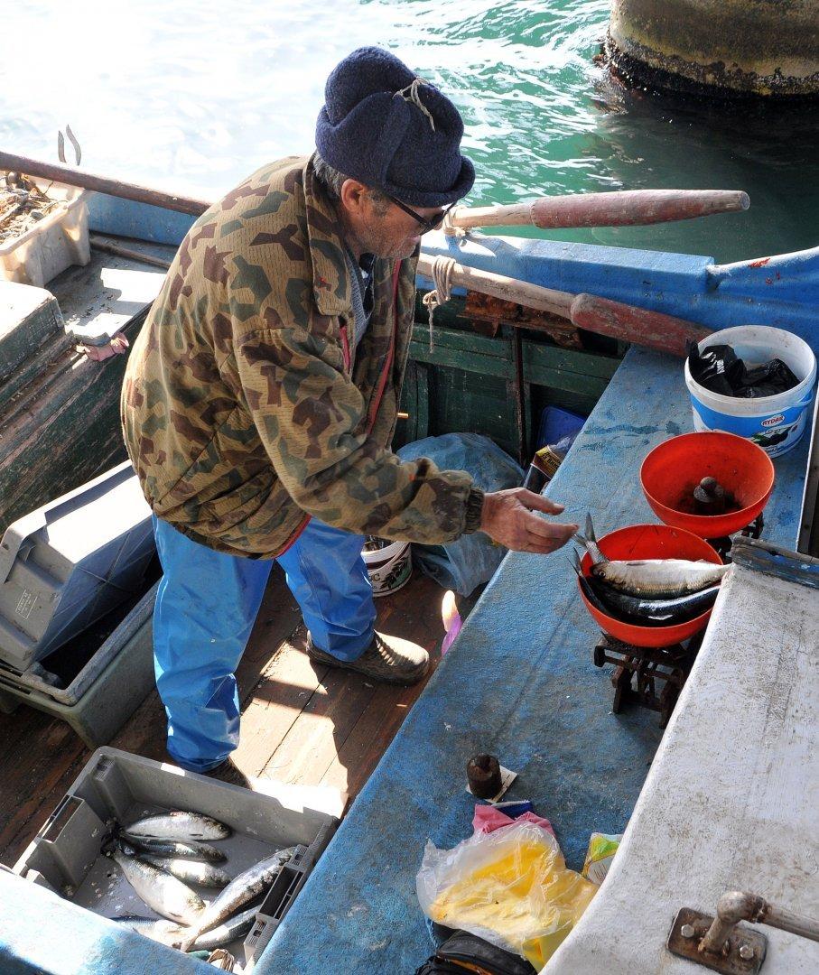 През 2020 година домакинствата в Бургаско са консумирали по 10 кг. риба и рибни продукти. Снимка Архив Черноморие-бг