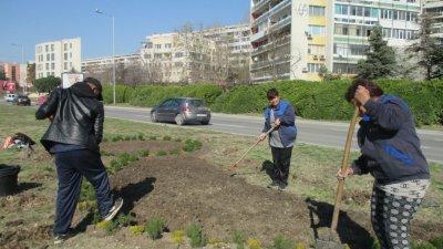 Освен цветя, ще бъдат засадени и ниско стеблени храсти. Снимки Община Варна