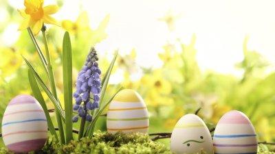 Фестивалът ще се проведе навръх Цветница във Флората