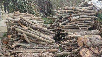 Дървесината е открита в частни дворове в село Русокастро при рутинна проверка. Снимки РДГ - Бургас